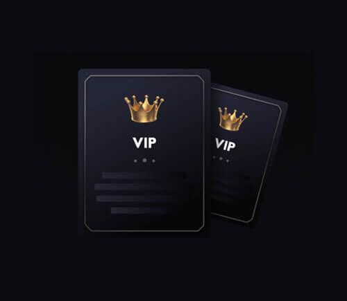 TWIN VIP